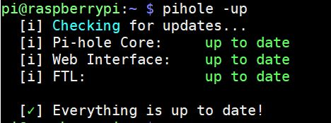 pi-hole update