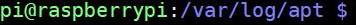 linux prompt path